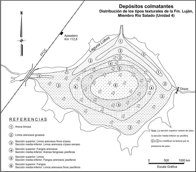 Depósitos colmatantes. Distribución esquemática de los tipos texturales de la Unidad 4: Fm. Luján, Miembro Río Salado.